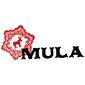 Mula Mexican Kitchen