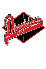 Diggidee's