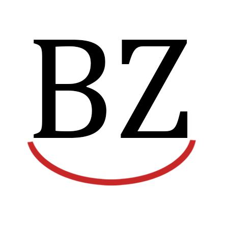 Rockin' BZ Burgers