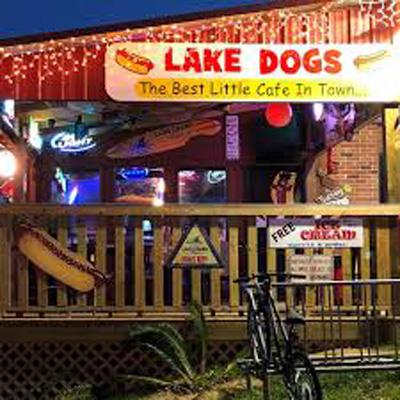 Lake Dogs at Long Pond