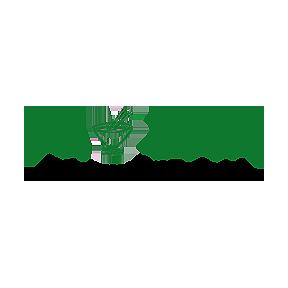 Pho Zen