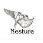 Nesture